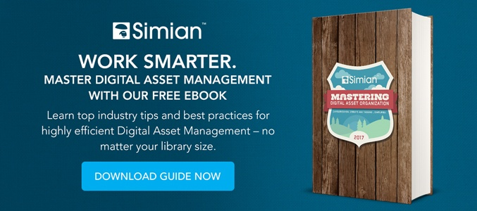 Mastering Digital Asset Organization Ebook