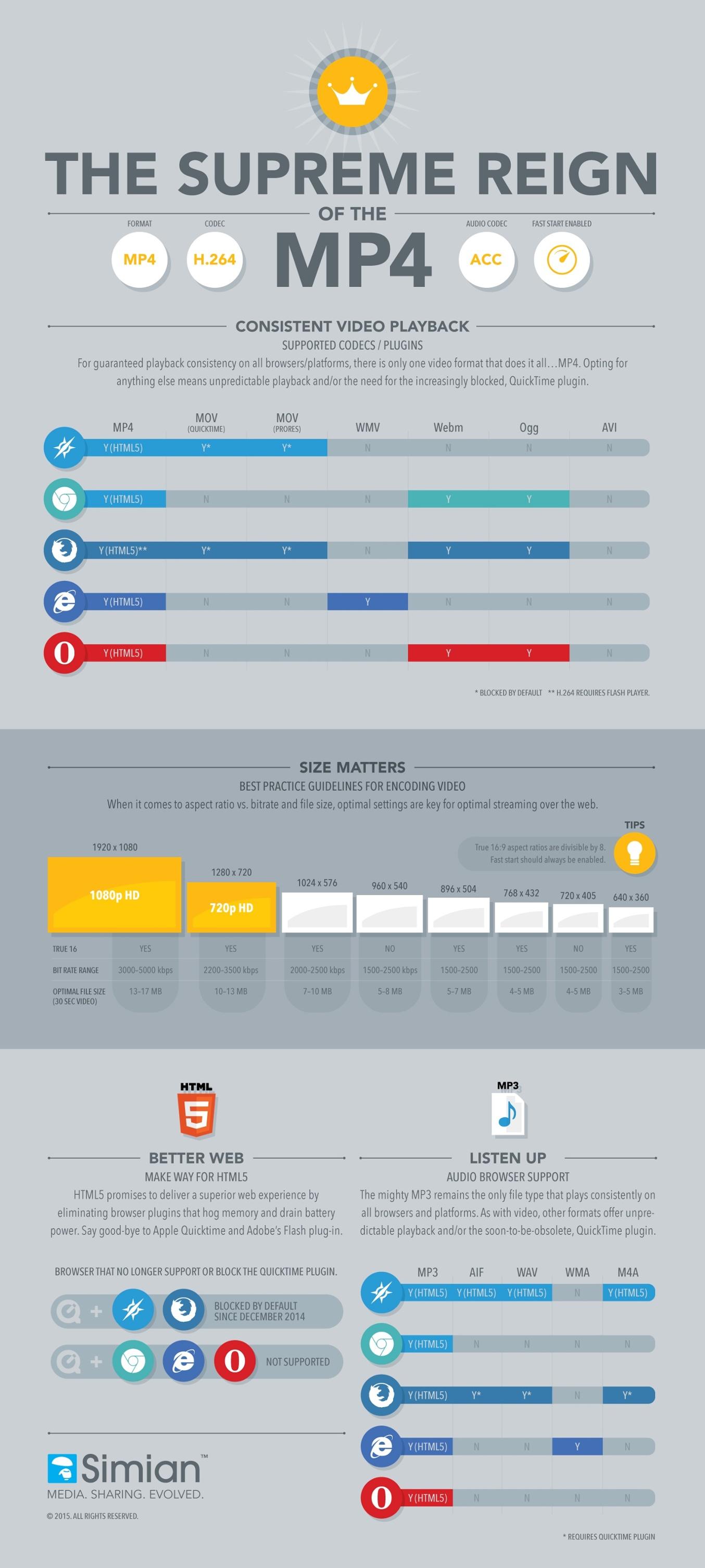 MP4 Infographic