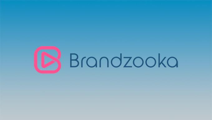 Brandzooka Programmatic Video Marketing